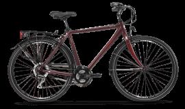 Biciklete-TARANTO-MAN-Bordeaux-min-1200x976